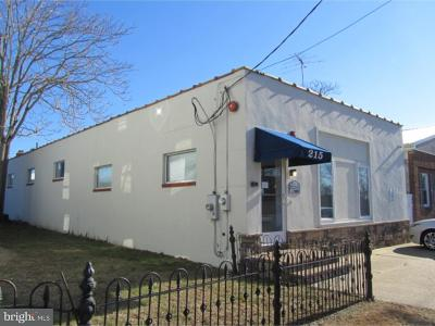 Millville Commercial For Sale: 215 Buck Street