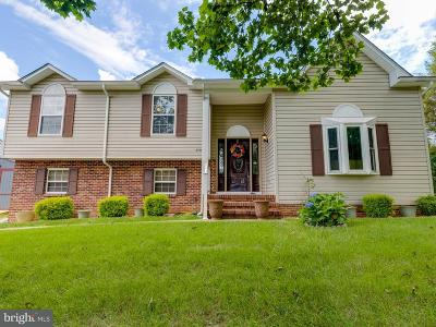 Single Family Home For Sale: 11719 McGinty Drive