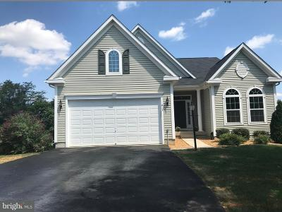 Culpeper County Single Family Home For Sale: 413 Standpipe Road