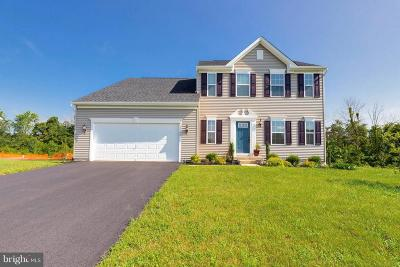 Culpeper Single Family Home For Sale: 15045 North Ridge Boulevard