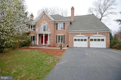 Centreville, Clifton Single Family Home For Sale: 5210 Glen Meadow Road