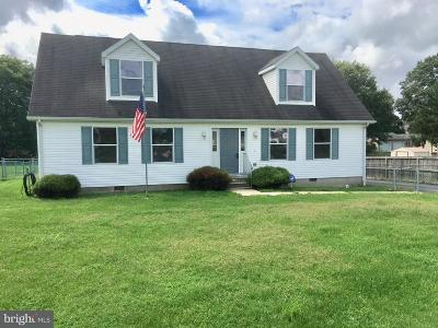 New Castle County Single Family Home For Sale: 138a Main Street