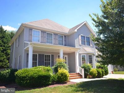 Easton Single Family Home For Sale: 316 Fall Lane