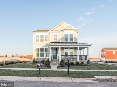 Leesburg Single Family Home For Sale: 1 Laconian Street SE