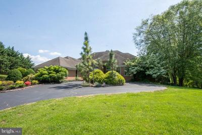 Anne Arundel County Single Family Home For Sale: 615 Traveller Court