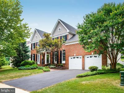 Ashburn Single Family Home For Sale: 19685 Player Court
