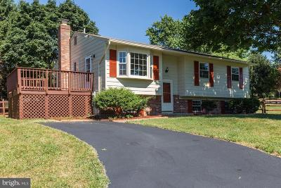 Gaithersburg Single Family Home For Sale: 24328 Log House Road