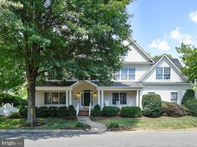 Falls Church Single Family Home For Sale: 700 Park Avenue