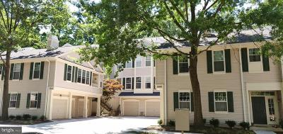 Reston Condo For Sale: 1300 Windleaf Drive #157