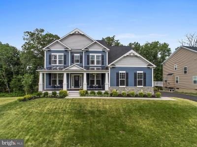 Aldie Single Family Home For Sale: 25671 Ruffed Grouse Court