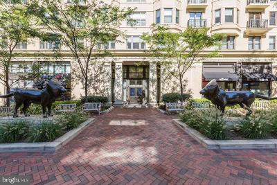 Bethesda Condo For Sale: 7710 Woodmont Avenue #507