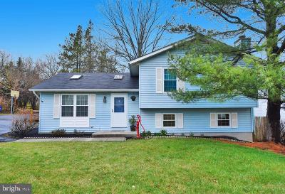 Bel Air Single Family Home For Sale: 518 Red Pump Road