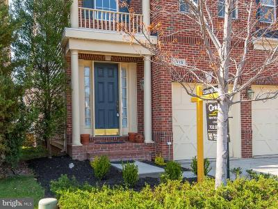 Herndon Single Family Home For Sale: 2378 Stone Fence Lane