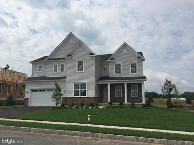 Collegeville Single Family Home For Sale: 169 Providence Circle