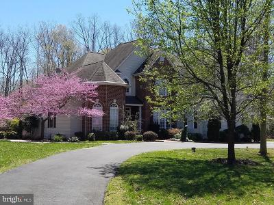 Port Tobacco Single Family Home For Sale: 8885 Locust Grove Drive