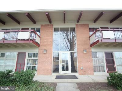 Annandale Rental For Rent: 4257 Americana Drive #10