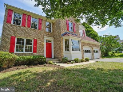 Single Family Home For Sale: 11117 Luttrell Lane