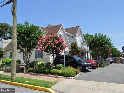 Rehoboth Beach Condo For Sale: 406 King Charles Avenue #5
