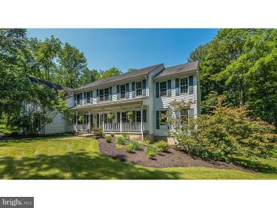 Bucks County Single Family Home For Sale: 6139 Stoney Hill Road