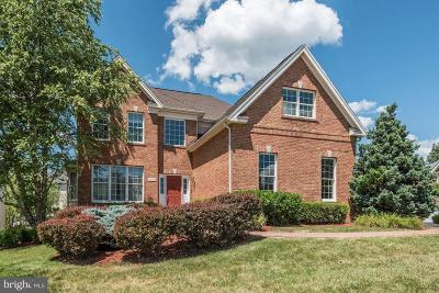 Ashburn Single Family Home For Sale: 20340 Medalist Drive