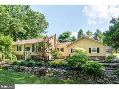 Downingtown Single Family Home For Sale: 10 Clover Lane