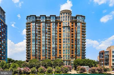McLean Condo For Sale: 8220 Crestwood Heights Drive #305