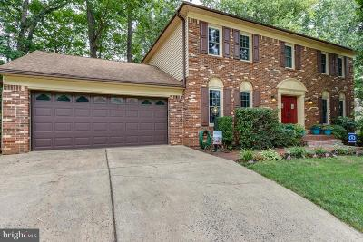 Prince William County Single Family Home For Sale: 15423 Skyline Drive