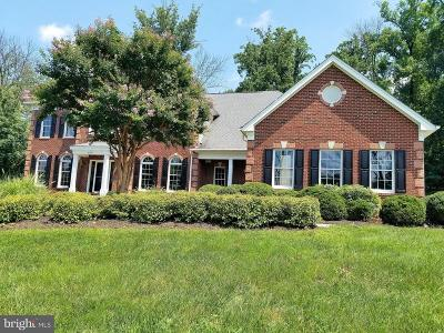Waterford Ridge Single Family Home For Sale: 41218 Cotter Court