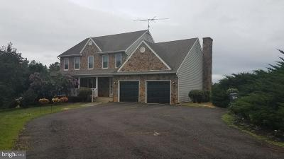 Culpeper Single Family Home For Sale: 12006 Lord Willing Drive