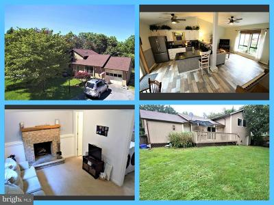 New Market Single Family Home For Sale: 6908 Fox Chase Road