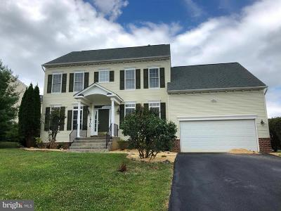 Hagerstown Single Family Home For Sale: 19106 Silver Maple Court