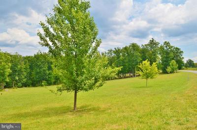 Residential Lots & Land For Sale: Woodstock Tower Road Road