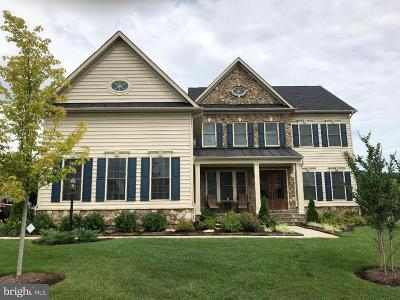 Chantilly Single Family Home For Sale: 42522 Madturkey Run Place