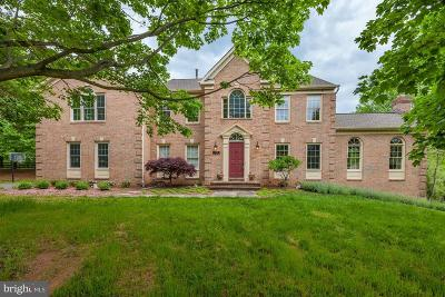 Darnestown Single Family Home For Sale: 13352 Manor Stone Drive