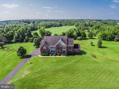 Prince William County Single Family Home For Sale: 13075 Edwards Island Drive
