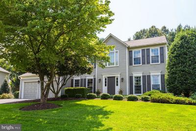 Vienna Single Family Home For Sale: 1607 Fremont Lane