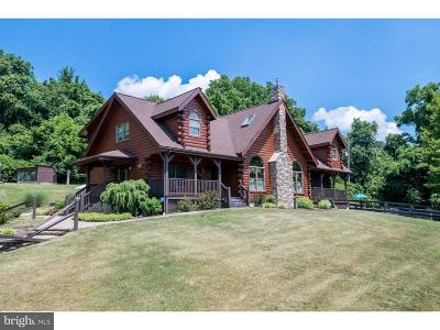 Berks County Single Family Home For Sale: 117 Indian Lane