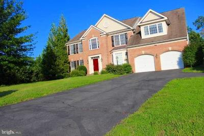 Prince William County Single Family Home For Sale: 4201 Divided Sky Court