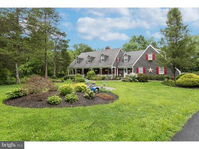 Bucks County Single Family Home For Sale: 5647 Stoney Hill Road
