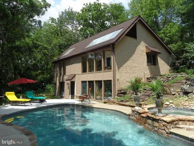 Bucks County Single Family Home For Sale: 395 Center Hill Road