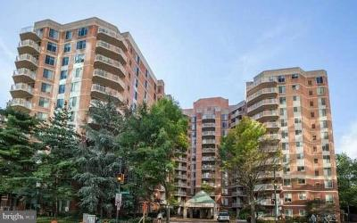Bethesda Condo For Sale: 7500 Woodmont Avenue #S217