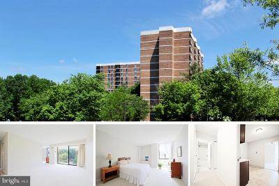 Annandale, Falls Church Condo For Sale: 2300 Pimmit Drive #403