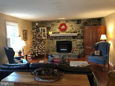 Lititz Single Family Home For Sale: 854 Furnace Hills Pike