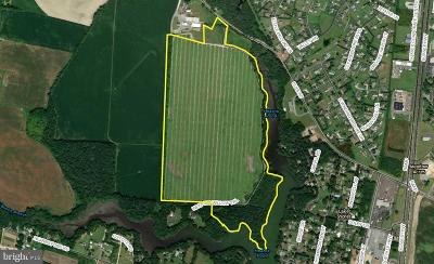 Seaford Residential Lots & Land For Sale: Weeping Willow Trail