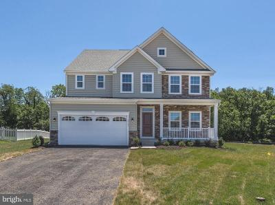 Hagerstown Single Family Home For Sale: 18145 Alloway Court