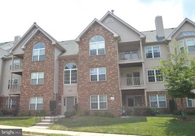 Fairfax, Fairfax Station Condo For Sale: 4104 Monument Court #202