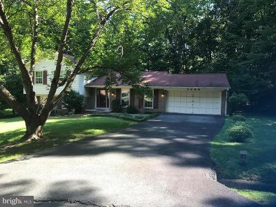 Reston Single Family Home For Sale: 2500 Wood Fern Court