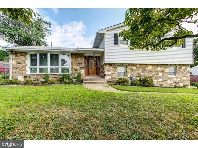 Pine Valley Single Family Home For Sale: 117 Alburger Avenue
