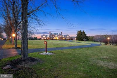 Solebury PA Single Family Home For Sale: $3,450,000