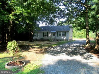 Chestertown Single Family Home For Sale: 8732 Elm Road